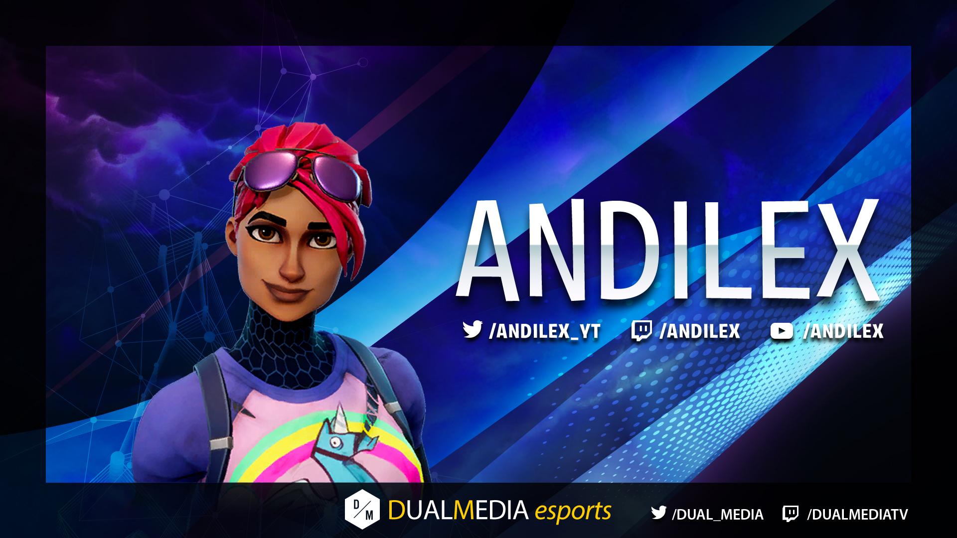 DualMedia Andilex Joueur Fortnite